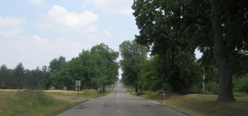My Summer Adventure in Michigan
