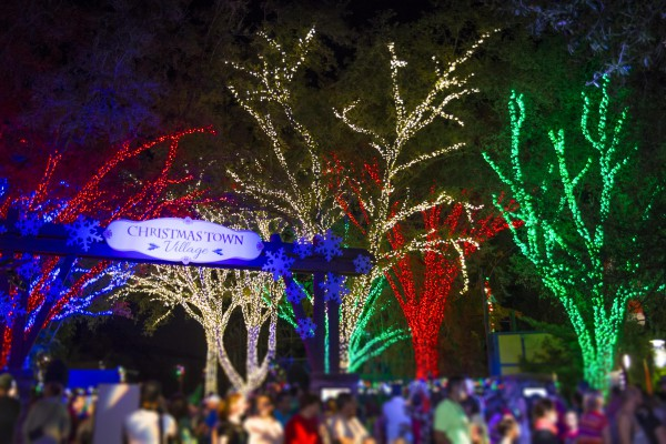 Busch Gardens Tampa Bay Christmas Town Lights