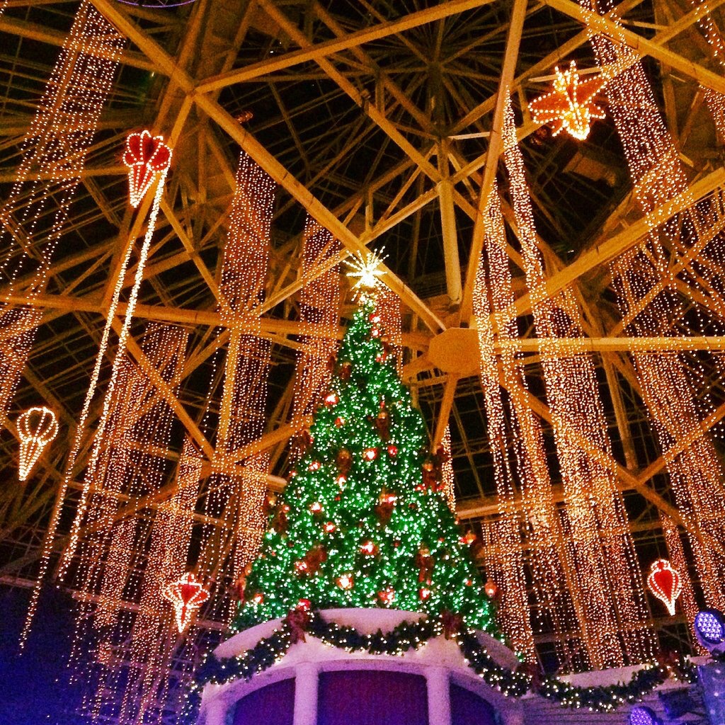 florida family holiday traditions christmas at gaylord palms resort - Christmas At Gaylord Palms