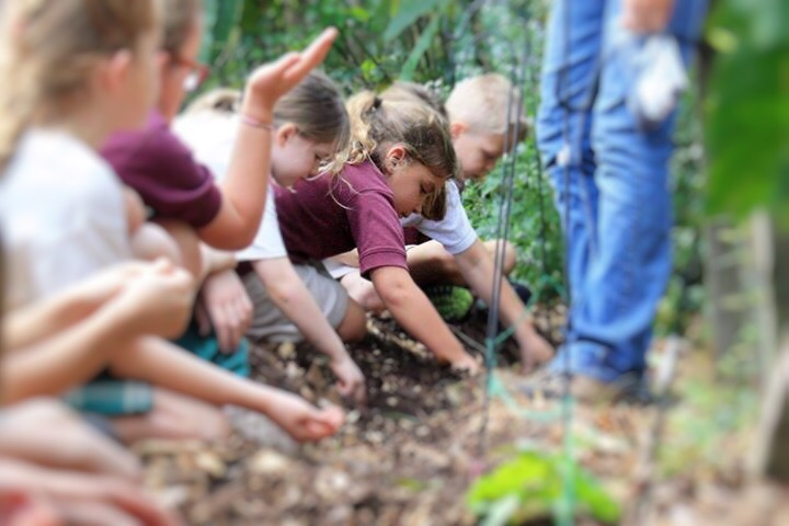 Celebrate Earth Day in Tampa Bay with EcoFest!