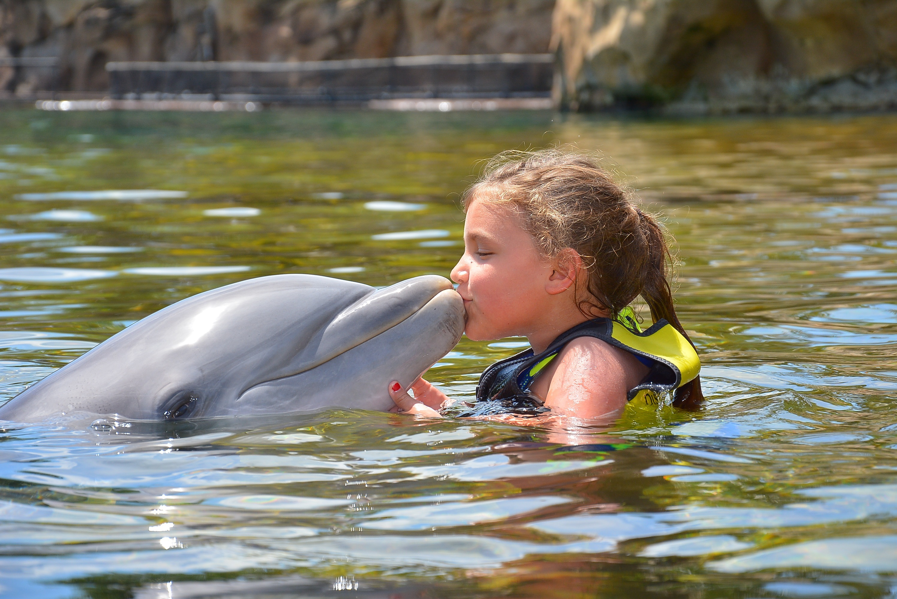 Discovery Cove- Shelby