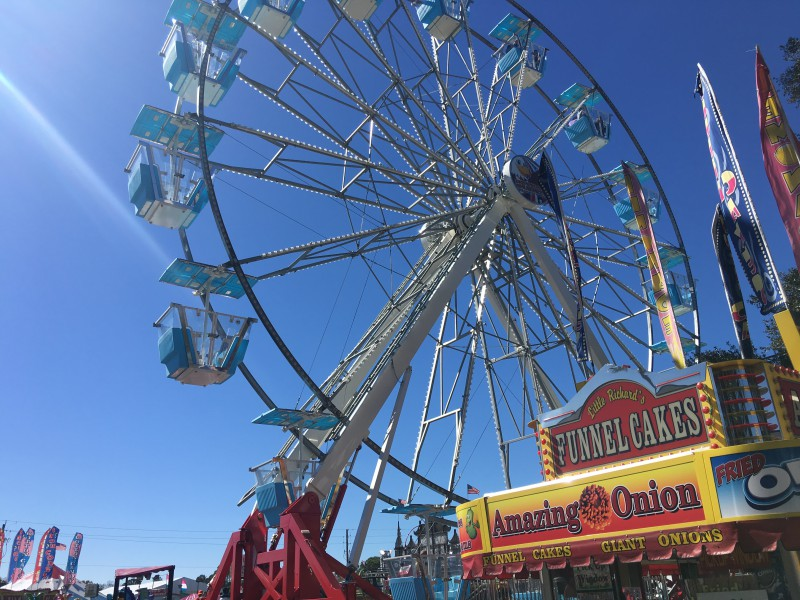 The Florida State Fair: Deep Fried Thoughts on Ferris Wheels, Fried Oreos and Corn Dogs || Tampa Mama