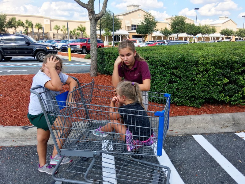 MOM HACK #351 from This Busy Tampa Mama: Walmart Grocery Online & Pickup Service is GENIUS