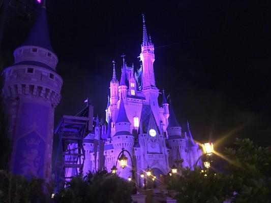 Walt Disney World Mickey's Not So Scary Halloween Party 2017